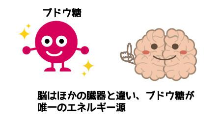 ブドウ糖と脳